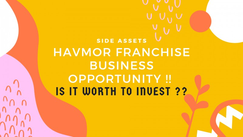 Havmor Ice Cream Franchise - Market Summary, Cost and Risk