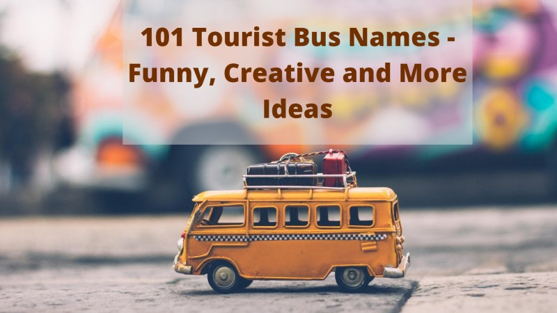 101 Tourist Bus Names - Funny, Creative and More Ideas